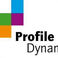 profile dynamics consultant